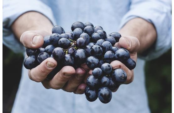 Kuidas toituda keskkonnasäästlikumalt?