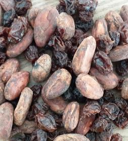 Segu valgete kakaoubadega 300 g, mahe