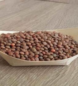 Läätsed pruunid 1 kg, mahe