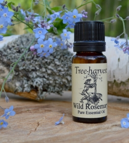 Eeterlik õli Rosemary wild 10 ml