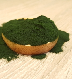 Chlorella powder 1kg, organic